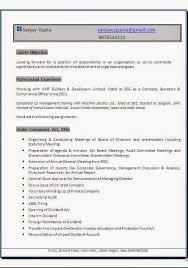Curriculum Vitae Vs Resume Sample Best of Example Professional Resume Sample Template Example OfExcellent