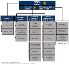Organization Chart AMSAA Organization 19