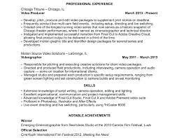 Sample Profile Statement For Resumes Sample Profile Statements For Resumes Simple Resume Format