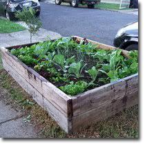 building a garden bed. Building A Garden Bed