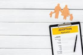 Mock Application Form Application Form For Adopt Child On White Background Top View
