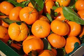 Resultado de imagen de mandarino