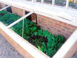 Small Picture Winter Vegetable Garden Gardening Ideas