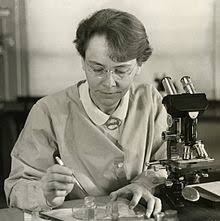 Eleanor McClintock: breeding, chemistry, clintock, cytogenetic ...
