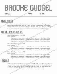 Sorority Resume Examples Lovely Retro Resume Contact Brookegudgel