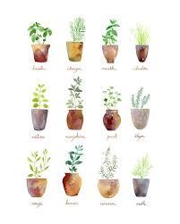 definition print kitchen art home culinary herbs art print by sandra ovono watercolor art studio society