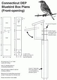 fabulous bluebird house plans from one board info for bluebird nest boxes bird houses and feeders
