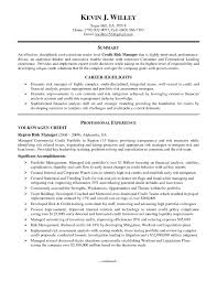 Best Solutions Of Credit Risk Analyst Resume Sample Great Brilliant