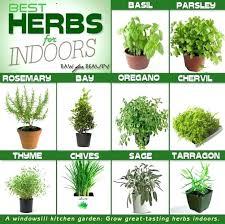 apartment herb garden. Simple Garden Start An Herb Garden Starting A Lovable Time To Herbs  Gardening Inside Apartment Herb Garden
