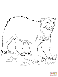Small Picture Wolverine Animal coloring page Free Printable Coloring Pages