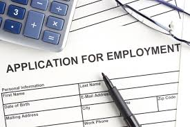 a step by step guide to the job application process