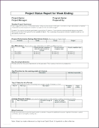 Claim Report Template Personal Expense Report Template