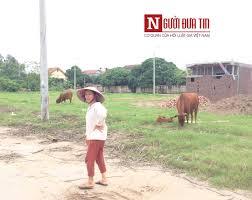 Vụ chó cắn chết cháu bé ở Hưng Yên: Đàn chó từng cắn nhiều người và gia  súc, chủ đàn chó coi thường cảnh báo