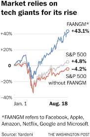 Rising stock market would be in the red without a handful of familiar names - The Washington Post