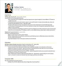 It Resume Examples Adorable Professional Resume Sample Professional It Resume Samples Lovely