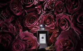 A Complete Guide to the Very Best <b>Oud Perfumes</b> - Savoir Flair