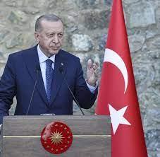 Türkei: Warum Erdogan die Eskalation des Botschafter-Streits ausfallen  lässt - WELT