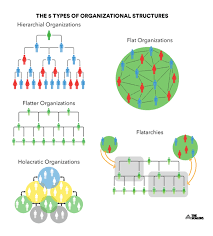 Holacracy Org Chart Future Proofing Your Organisational Structure Beyond 2019