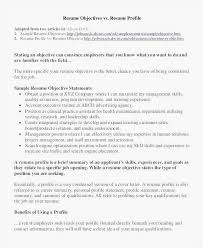 Objective Summary For Resume Delectable Resume Objective Or Summary Beautiful Objective Summary For Resume