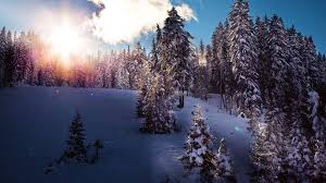 winter backgrounds for desktop tumblr. Perfect Desktop For Winter Backgrounds Desktop Tumblr
