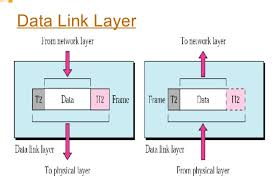 Data Link Layer Notes On Open System Interconnection Osi Model Grade 12