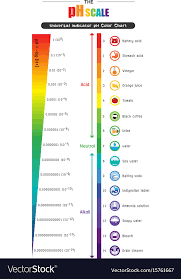 Ph Balance Chart Ph Scale Universal Indicator Ph Color Chart Vector Image