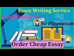 feedback for essay toefl writing test