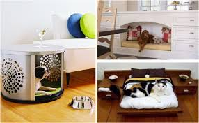 animal friendly furniture. Creative Pet Friendly Furniture - Find Fun Art Projects To Do At Home And  Arts Crafts Ideas | Animal Friendly Furniture T