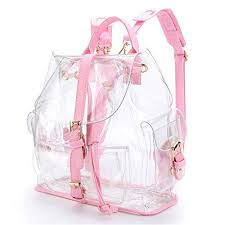 <b>Transparent Bag</b>: Amazon.ca