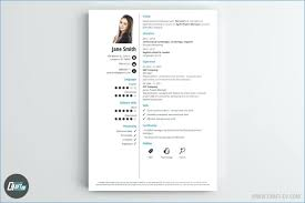 Web Resume Examples Great Examples Of Creative Resume Design Graphic ...