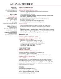 Resume Servises College Essays For The Common Application Chicago