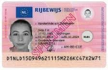 - Naati Driver's Dutch Translation Licence