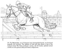 Small Picture Stunning Horse Jumping Coloring Pages Pictures Coloring Page