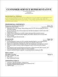 Examples Of Resume Profile Section Resume Resume Examples