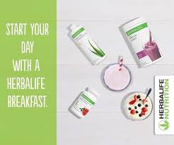 Herbalife Meal Plan Herbalife Independent Member Hlfonline Co Uk