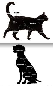 A Petting Chart For Cats And Dogs Imgur