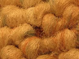 carpet mites. detecting and controlling carpet beetles mites t