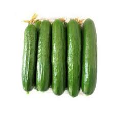 بذر خیار هیبرید سهیل (Soheil f1)