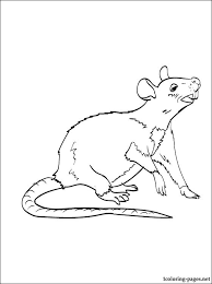 Small Picture Rat coloring page to print out Coloring pages