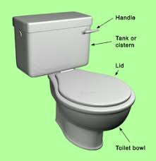 parts for a toilet. main parts of a toilet for