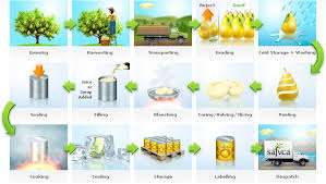 Food Preservation Chart Part B Canning Food Preservation
