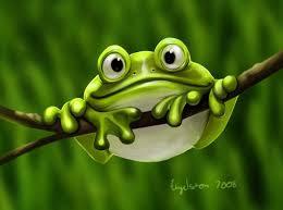 Картинки по запросу жабка