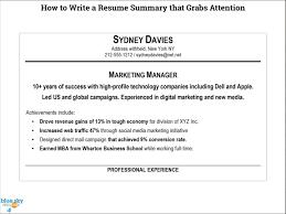 Writing A Resume Summary Yralaska Com