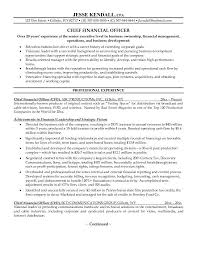 example chief financial officer resume free sample cfo finance - cfo resume  examples