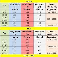Bone Mass Percentage Chart By Age Mass Chart Sada Margarethaydon Com