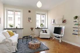 apartment living room color ideas. Modern Gray Wall Paint Color Idea Apartment Decorating Ideas On A Budget Glass Maple Coffee Table Classy Rug Carpet Design Black Leather Comfy Sofa Living Room E