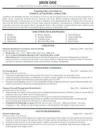Cv Consulting Consulting Template It Consultant Resume Fresh Example Examples