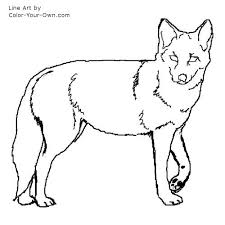 Small Picture Coyote Coloring Page
