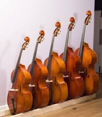 Double Bass Hire And Rental Student And Professional Bass