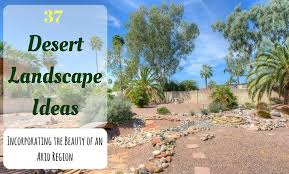 Desert Backyard Designs Inspiration 48 Desert Landscape Ideas